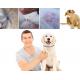 Natürliches Floh- und Zeckenhalsband für Hunde